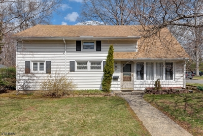Berkeley Heights Single Family Home For Sale: 29 Delmore Ave