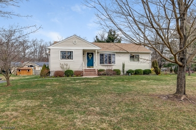 Raritan Twp. Single Family Home For Sale: 10 Everitts Hill Rd