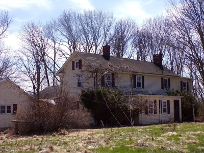 Alexandria Twp. Single Family Home For Sale: 52 Airport Road