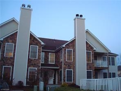 Piscataway Twp. Condo/Townhouse For Sale: 45 Lackland Ave