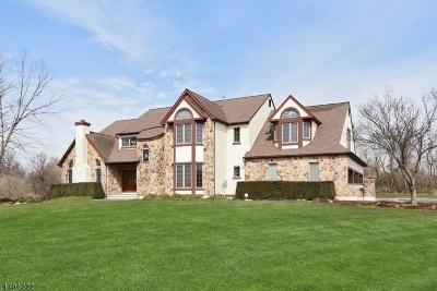 Readington Twp. Single Family Home For Sale: 19 Rowlands Rd