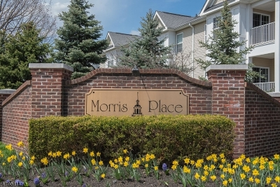 Morristown Town, Morris Twp. Condo/Townhouse For Sale: 78 Taft Lane #78