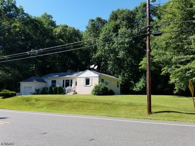 Sussex County Single Family Home For Sale: 80 Sterling Hill Rd