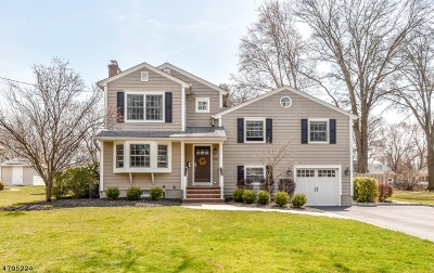 Scotch Plains Twp. Single Family Home For Sale: 1916 Mary Ellen Ln