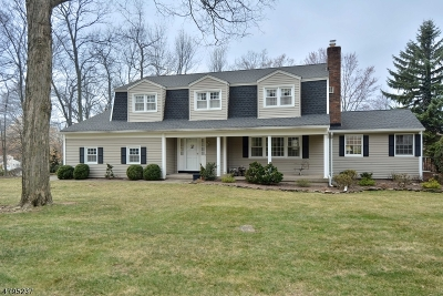 Passaic County Single Family Home For Sale: 6 Stockton Rd