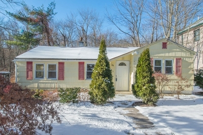 Passaic County Single Family Home For Sale: 29 Elm St