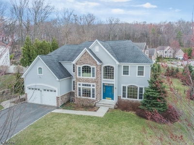 Morris County Single Family Home For Sale: 2 Skyview Ter