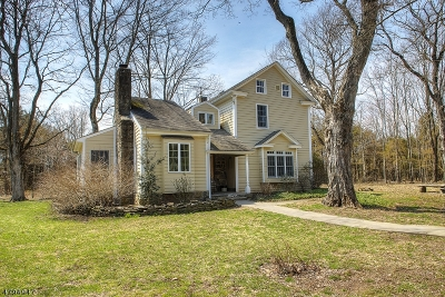 Kingwood Twp. Single Family Home For Sale: 180 Kingwd Sta-Barbertown