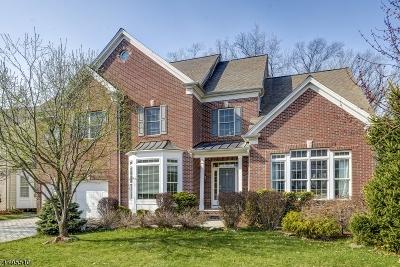 Totowa Boro Single Family Home For Sale: 171 Hickory Hill Blvd