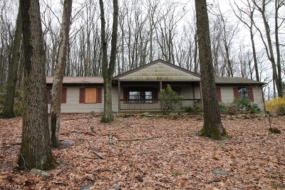 Bethlehem Twp. Single Family Home For Sale: 152 Black Brook Rd