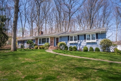 Parsippany-Troy Hills Twp. Single Family Home For Sale: 18 Medford Rd