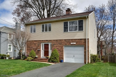 Westfield Town NJ Single Family Home For Sale: $549,000