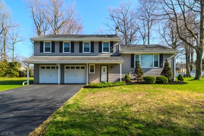 Piscataway Twp. Single Family Home For Sale: 225 Davis Ave