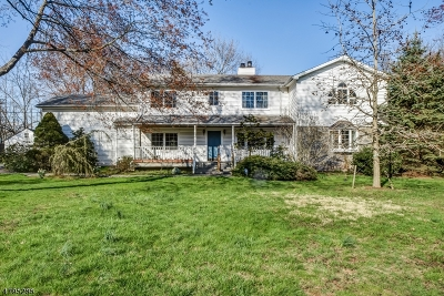 Scotch Plains Twp. Single Family Home For Sale: 1381 Terrill Rd