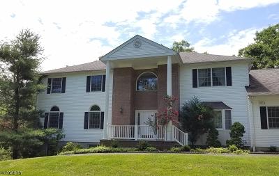 Bridgewater Twp. Single Family Home For Sale: 1020 Sunset Ridge