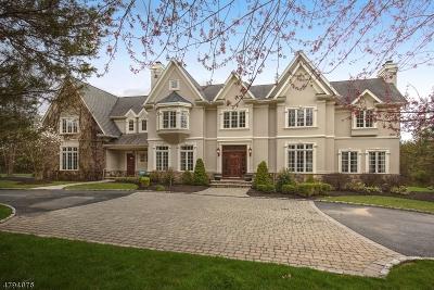 Far Hills Boro Single Family Home For Sale: 6 Fox Hunt Ct