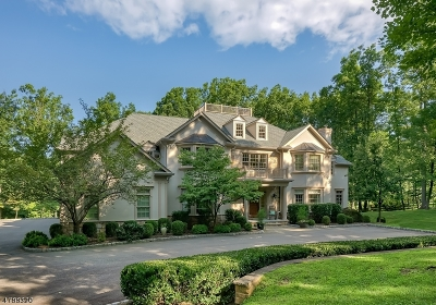 Bernardsville Boro Single Family Home For Sale: 151 Post Kennel Rd
