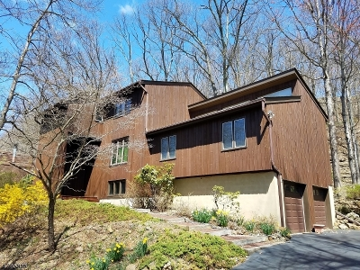 Bridgewater Twp. Single Family Home For Sale: 820 Star View Way