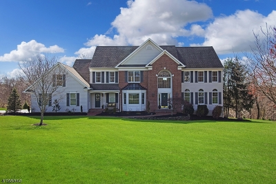 Clinton Twp. Single Family Home For Sale: 15 Chalfonte Dr