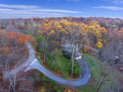 Clinton Twp. Single Family Home For Sale: 1 Woods Rd