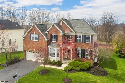 Clinton Town, Clinton Twp. Single Family Home For Sale: 55 Crestview Dr