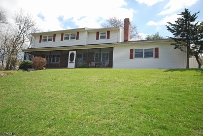 Branchburg Twp. Single Family Home For Sale: 303 Branch Dr