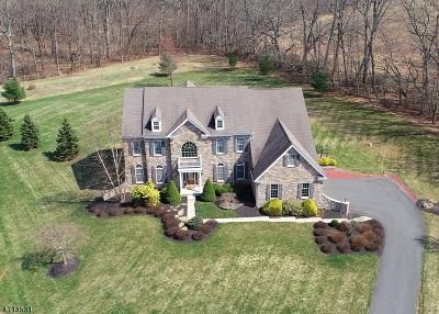 Alexandria Twp. Single Family Home For Sale: 17 Belmont Ct