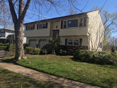 Parsippany Single Family Home For Sale: 49 Rockaway Pl