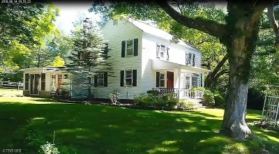 Readington Twp. Single Family Home For Sale: 31 Centerville Rd