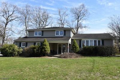 Wayne Twp. Single Family Home For Sale: 37 Eleron Pl