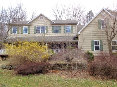 Mendham Boro Single Family Home For Sale: 11 Ironia Rd