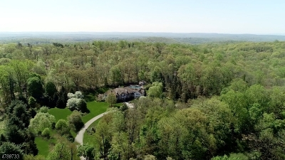 Bernardsville Boro Single Family Home For Sale: 46 Post Ln