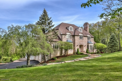 Bernardsville Boro Single Family Home For Sale: 87 Skyline Dr