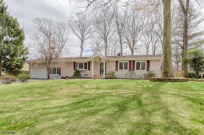 Parsippany Single Family Home For Sale: 40 Willow Way
