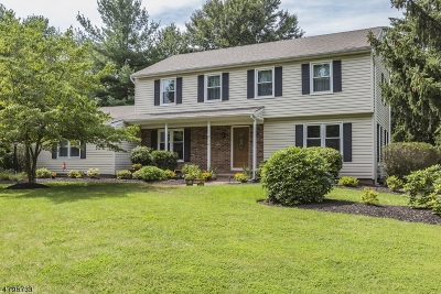 Montgomery Twp. Single Family Home For Sale: 22 Hoagland Dr