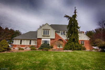 Branchburg Twp. Single Family Home For Sale: 61 Colin Ct