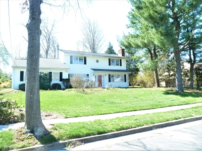 Piscataway Twp. Single Family Home For Sale: 461 Hillside Ave