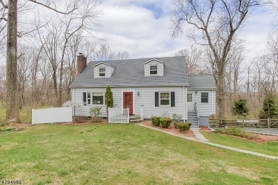 Chatham Twp Single Family Home For Sale: 574 Fairmount Ave