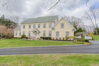 Morris Twp. Single Family Home For Sale: 9 Holmes Ct