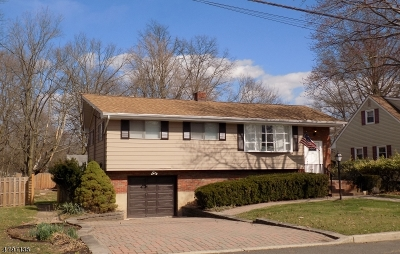 Bridgewater Twp. Single Family Home For Sale: 129 Chestnut St