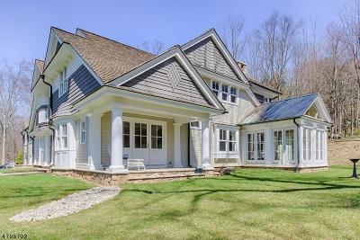 Morris Twp. Single Family Home For Sale: 14 Doe Hill Rd