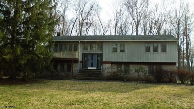 Long Hill Twp Single Family Home For Sale: 206 Carlton Rd