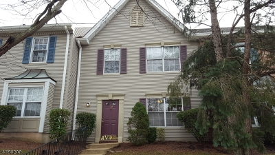 Bridgewater Twp. Condo/Townhouse For Sale: 1103 Doolittle Dr