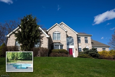 Mount Olive Twp. Single Family Home For Sale: 4 Willow Ct