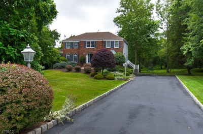 Warren Twp. Single Family Home For Sale: 86 Washington Valley Rd