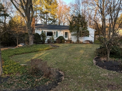 Berkeley Heights Single Family Home For Sale: 119 Chestnut Hill Dr