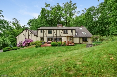 Bernardsville Boro Single Family Home For Sale: 93 Douglass Ave