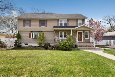 Bridgewater Twp. Single Family Home For Sale: 620 3rd St