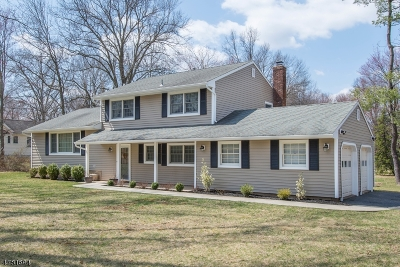 Long Hill Twp Single Family Home For Sale: 262 Northfield Rd