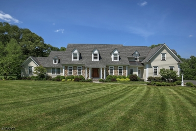 Bernardsville Boro Single Family Home For Sale: 335 Mendham Rd.